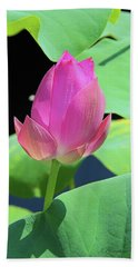 Sacred Pink Hand Towel by Inspirational Photo Creations Audrey Woods