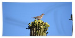 Saguaro Dove 1 Hand Towel
