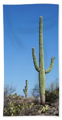 Saguaro National Park Arizona Bath Towel
