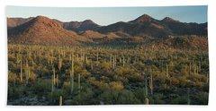 Saguaro National Park At Signal Hill Panoramic Bath Towel