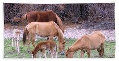 Salt River Wild Horses In Winter Hand Towel