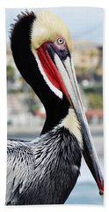 Bath Towel featuring the photograph San Diego Pelican by Kyle Hanson