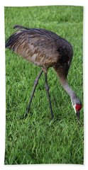 Hand Towel featuring the photograph Sandhill Crane II by Richard Rizzo