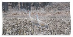 Bath Towel featuring the photograph Sandhill Cranes 1171 by Michael Peychich