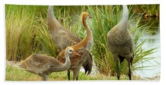 Sandhill Cranes On Alert Bath Towel