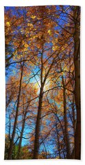 Bath Towel featuring the photograph Santa Fe Beauty II by Stephen Anderson