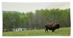 Saskatchewan Buffalo Bath Towel by Ryan Crouse