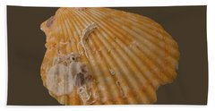 Scallop Shell With Guests Transparency Bath Towel