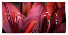 Hand Towel featuring the photograph Scarlet Lilies by Kathleen Stephens