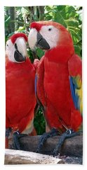 Scarlet Macaws Hand Towel by Ellen Henneke
