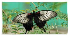 Hand Towel featuring the photograph Scarlet Swallowtail Butterfly -2 by Paul Gulliver
