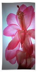 Schlumbergera Portrait. Hand Towel by Terence Davis