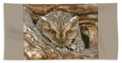 Screech Owl On Spring Creek Hand Towel