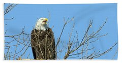 Screeching Eagle Bath Towel by Brook Burling