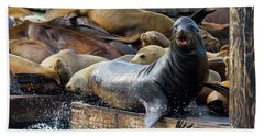 Sea Lions On The Floating Dock In San Francisco Hand Towel