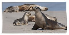Hand Towel featuring the photograph Sea Lions by Werner Padarin
