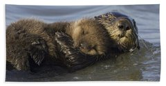 Sea Otter Mother With Pup Monterey Bay Hand Towel by Suzi Eszterhas