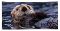 Sea Otter Hand Towel by Yva Momatiuk and John Eastcott and Photo Researchers