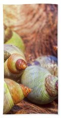 Sea Snails Hand Towel