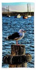 Seagull Perch Hand Towel