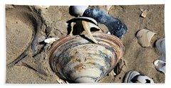Seashells At Holgate Beach On Long Beach Island Hand Towel