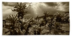 Hand Towel featuring the photograph Sepia Tone Of Cholla Cactus Garden Bathed In Sunlight by Randall Nyhof