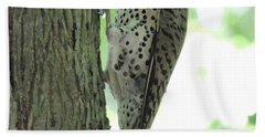 Hand Towel featuring the photograph September Flicker by Peg Toliver