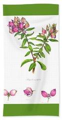 Hand Towel featuring the painting Septemberbossie  Polygala Myrtifolia by Heidi Kriel