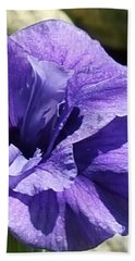 Shades Of Purple Hand Towel