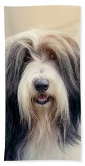 Shaggy Dog Hand Towel
