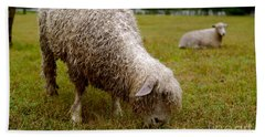Sheep Begin A New Day Hand Towel
