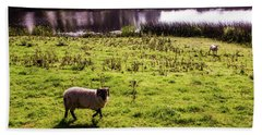 Sheep In Eniskillen Bath Towel