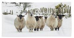 Sheep In Snow Bath Towel