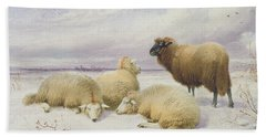 Sheep In The Snow Bath Towel