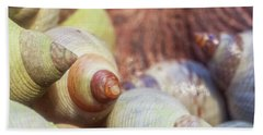 Shells Hand Towel