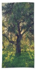 Hand Towel featuring the photograph Shine Your Light by Laurie Search