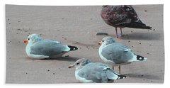 Shore Birds Hand Towel