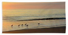 Shorebirds 9/4/17 Hand Towel