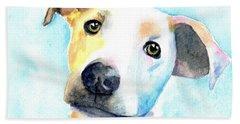 Short Hair White And Brown Dog Hand Towel