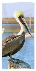 Shy Brown Pelican Hand Towel by Haleh Mahbod
