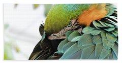 Shy Macaw Bath Towel