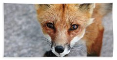 Hand Towel featuring the photograph Shy Red Fox  by Debbie Oppermann