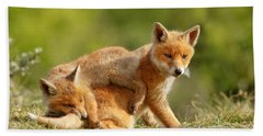 Sibbling Love - Playing Fox Cubs Hand Towel by Roeselien Raimond