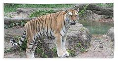 Siberian Tiger Hand Towel