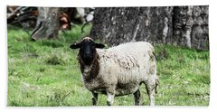 Silence Of The Umm Sheep 1 Hand Towel