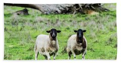 Silence Of The Umm Sheep 2  Hand Towel