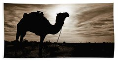 Silhouetted Camel, Sahara Desert, Douz Hand Towel