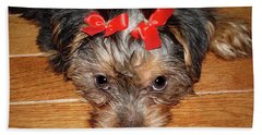 Silky Terrier Puppy Face Hand Towel