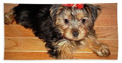 Bath Towel featuring the photograph Silky Terrier Puppy by Sue Melvin