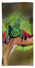 Silly Amazon Parrot Hand Towel by Smilin Eyes  Treasures